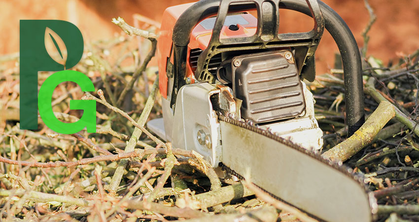 Chainsaw with Pro Green Trees Letter Logo Overlay